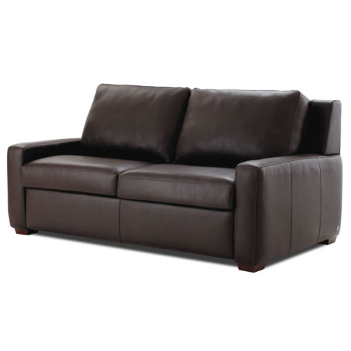 Lyndon Sleeper Loveseat
