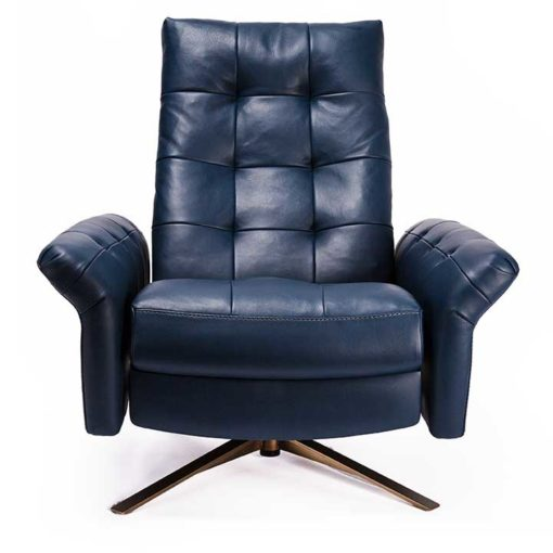 Pileus Comfort Air™ Chair by American Leather Front View at Creative Classics Furniture in Alexandria VA near Arlington VA and Washington DC