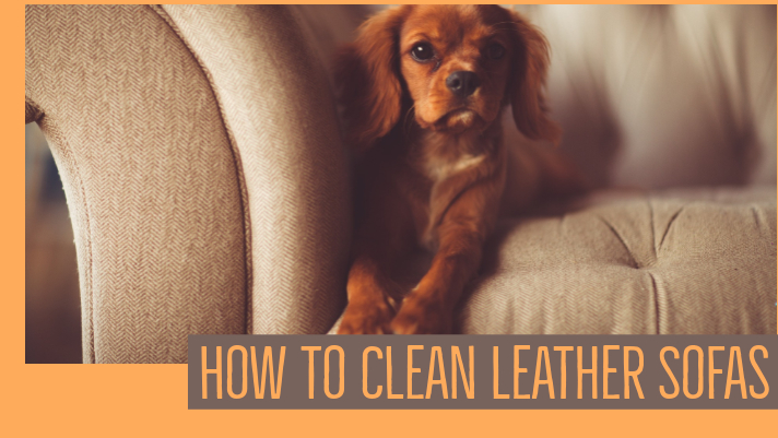 Cleaning Leather Sofas Is Much Easier Than You've Heard